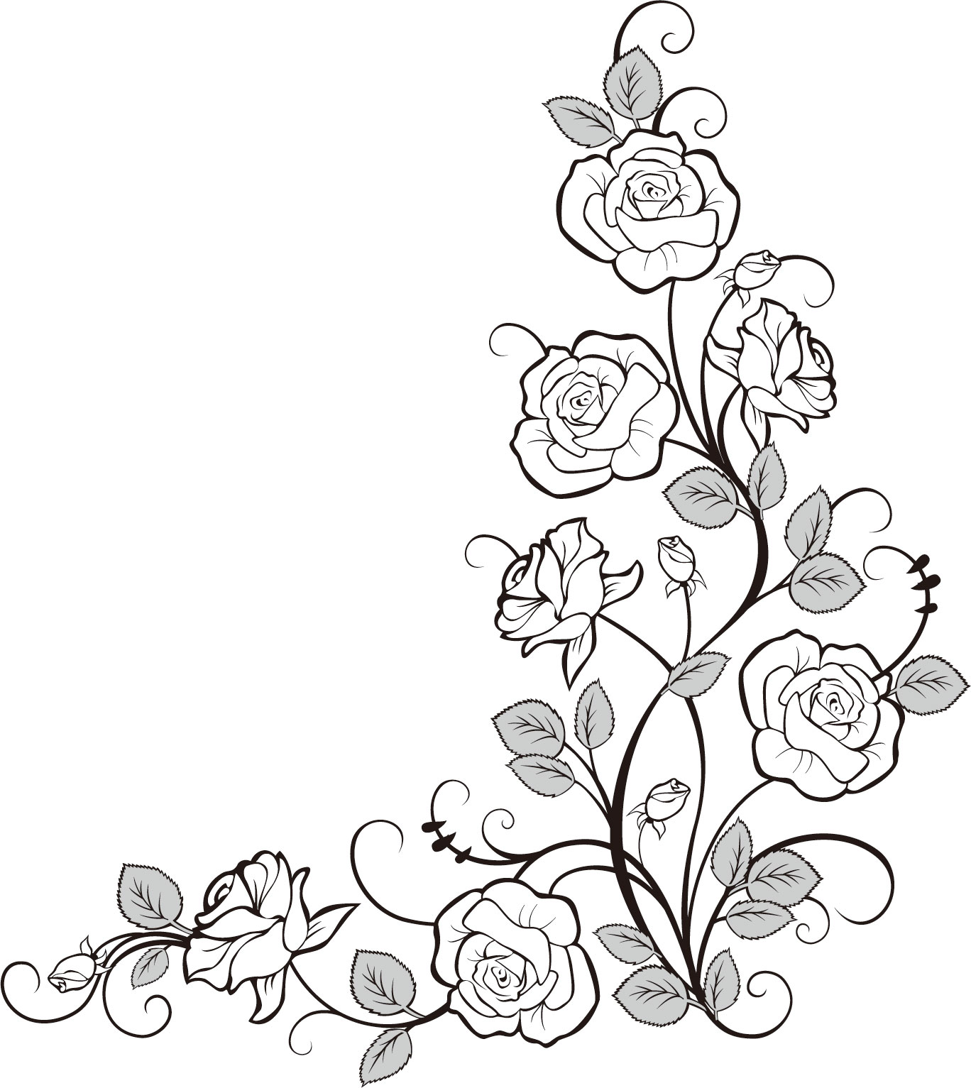 Sketches Of Ivy Vines Coloring Pages