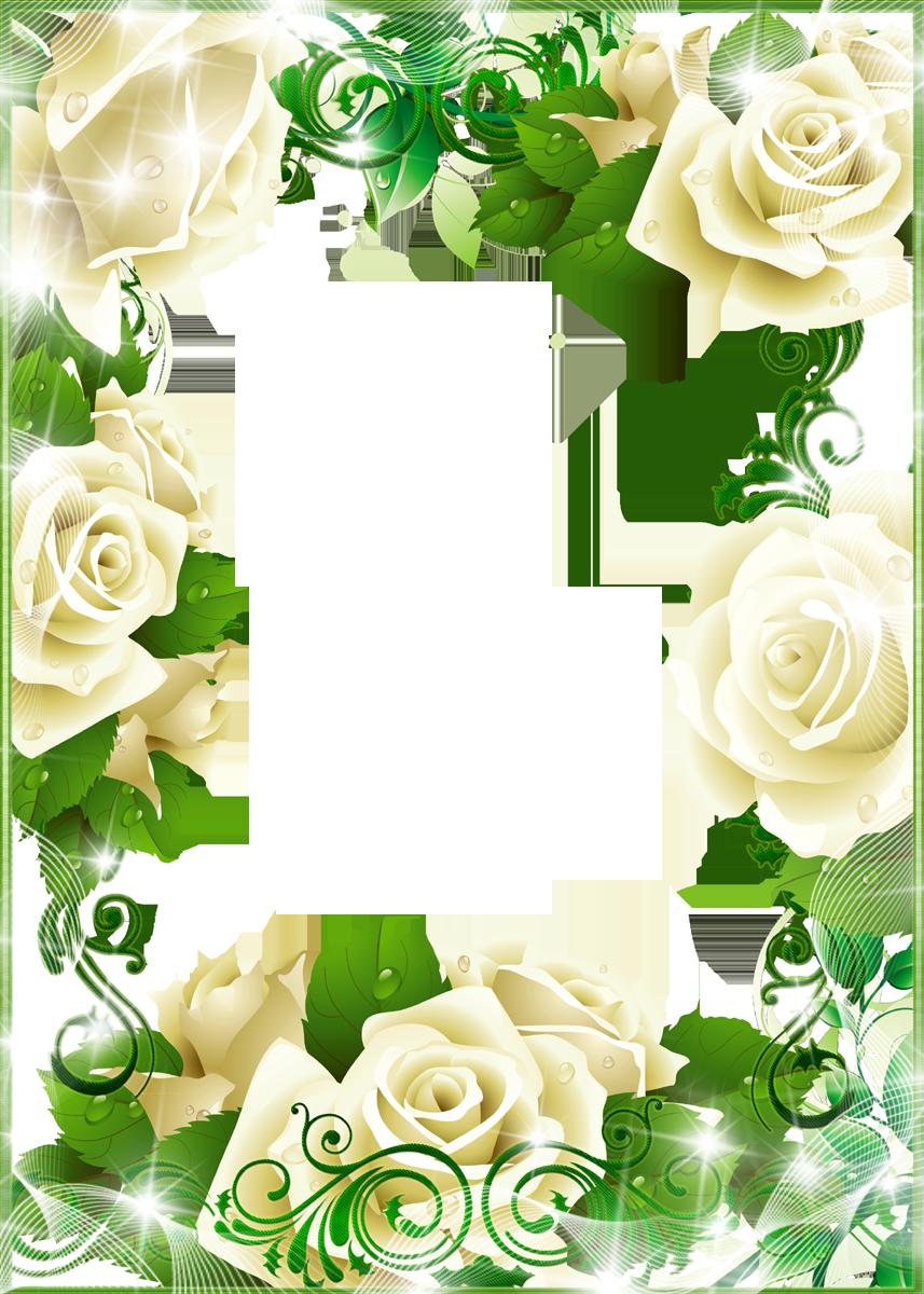 壁紙・背景イラスト/花のフレーム・外枠 no.026『白バラ・光彩・透過色』