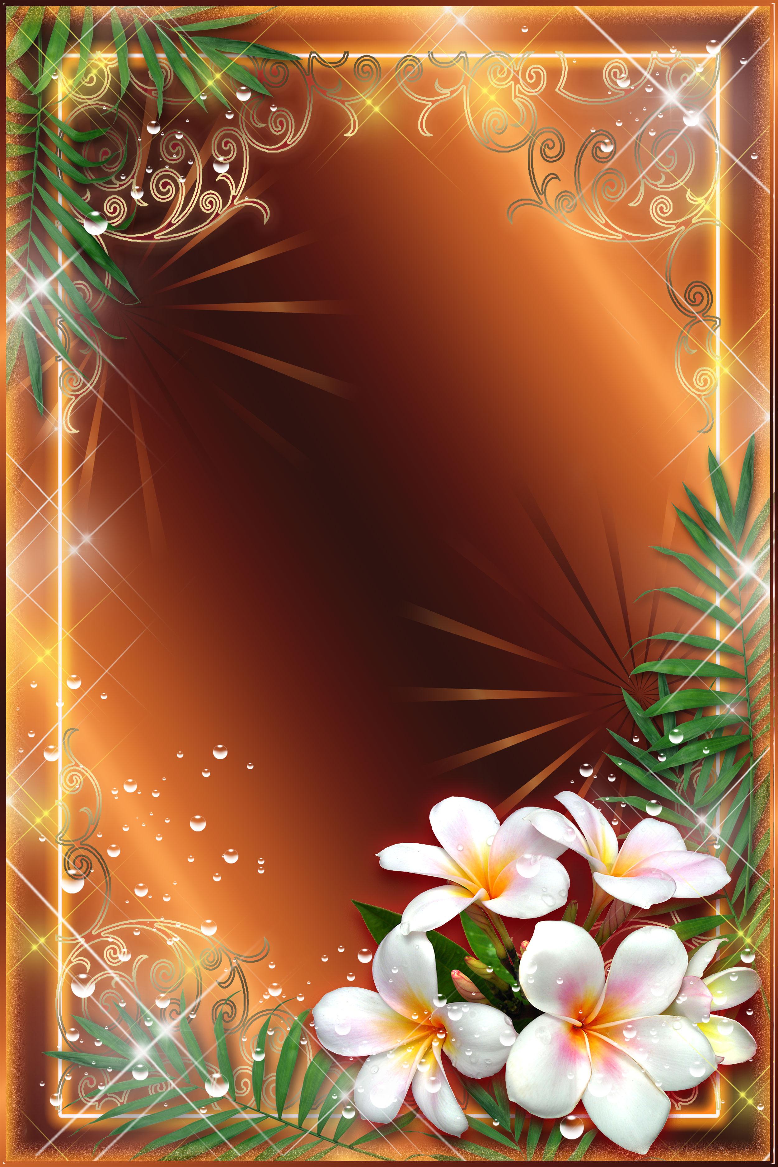 壁紙 背景イラスト 花のフレーム 外枠 No 072 プルメリア