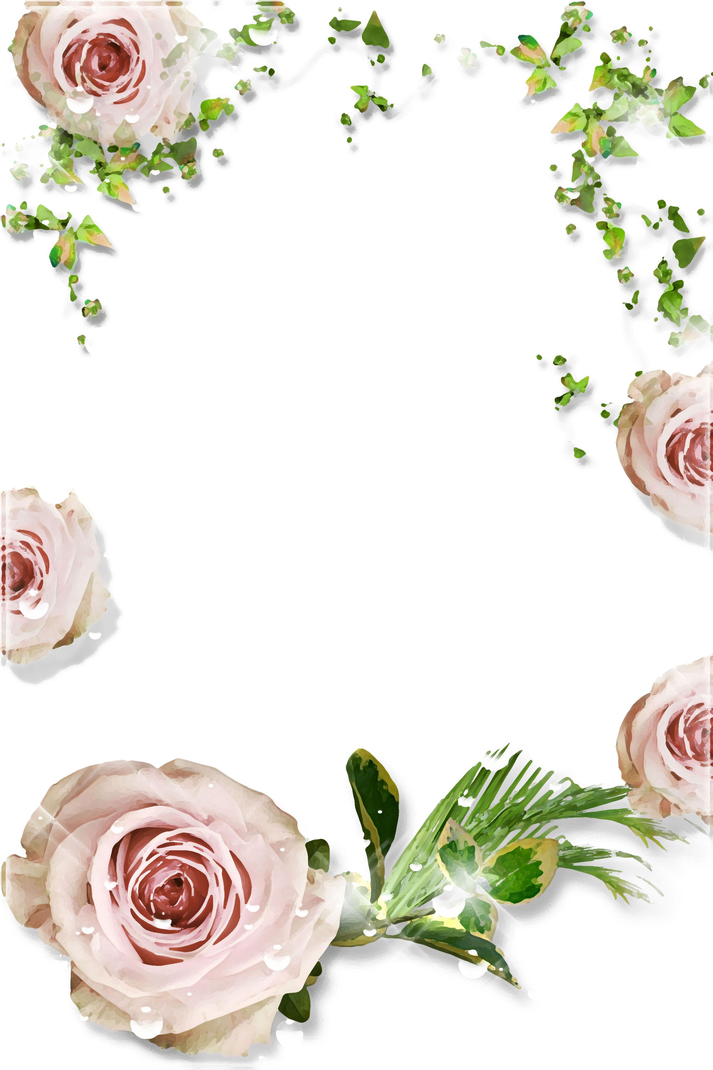 壁紙・背景イラスト/花のフレーム・外枠 no.079『白バラ・葉