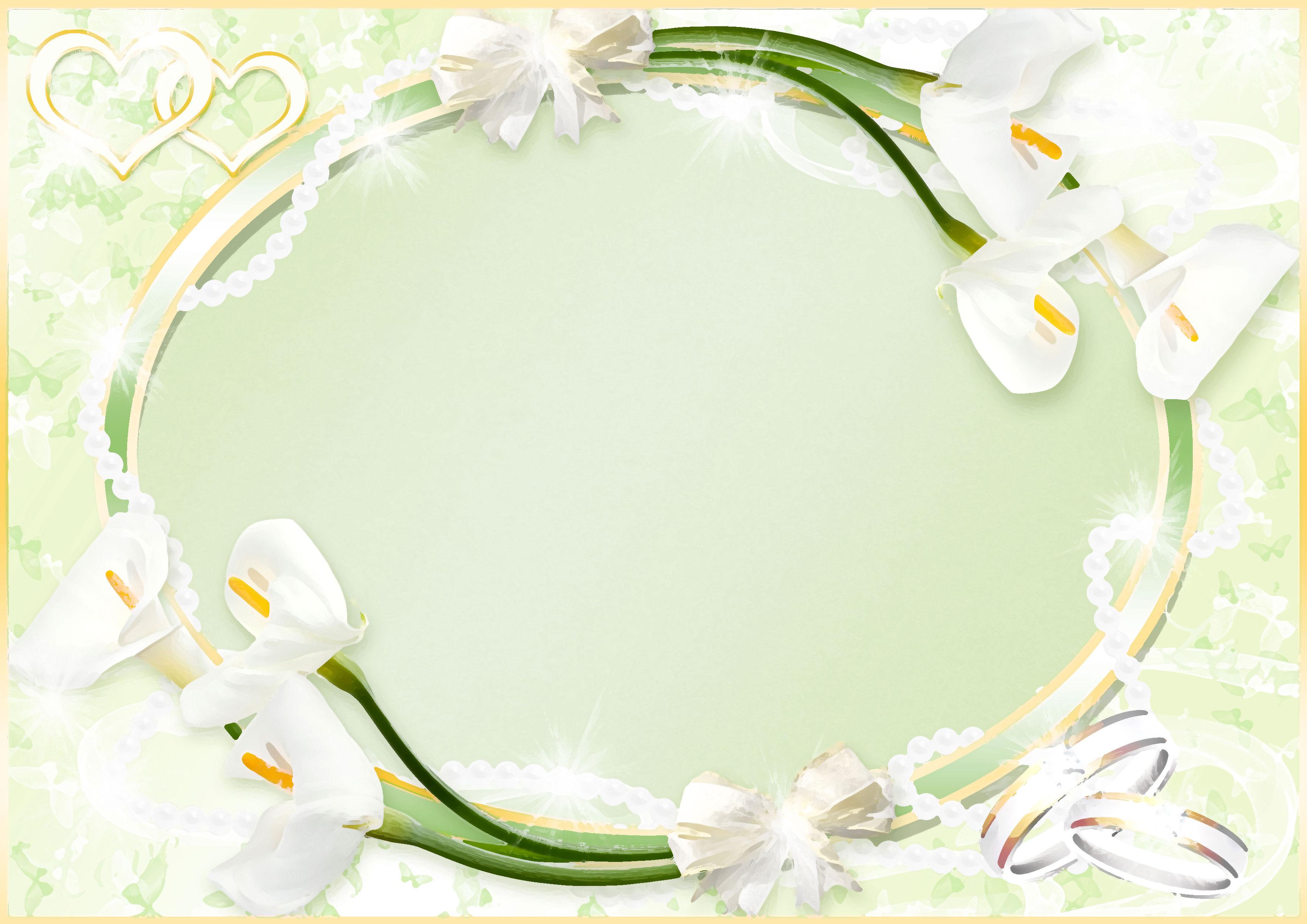 イラスト イラスト枠 無料 ダウンロード : 白いの花のイラスト・フリー ...