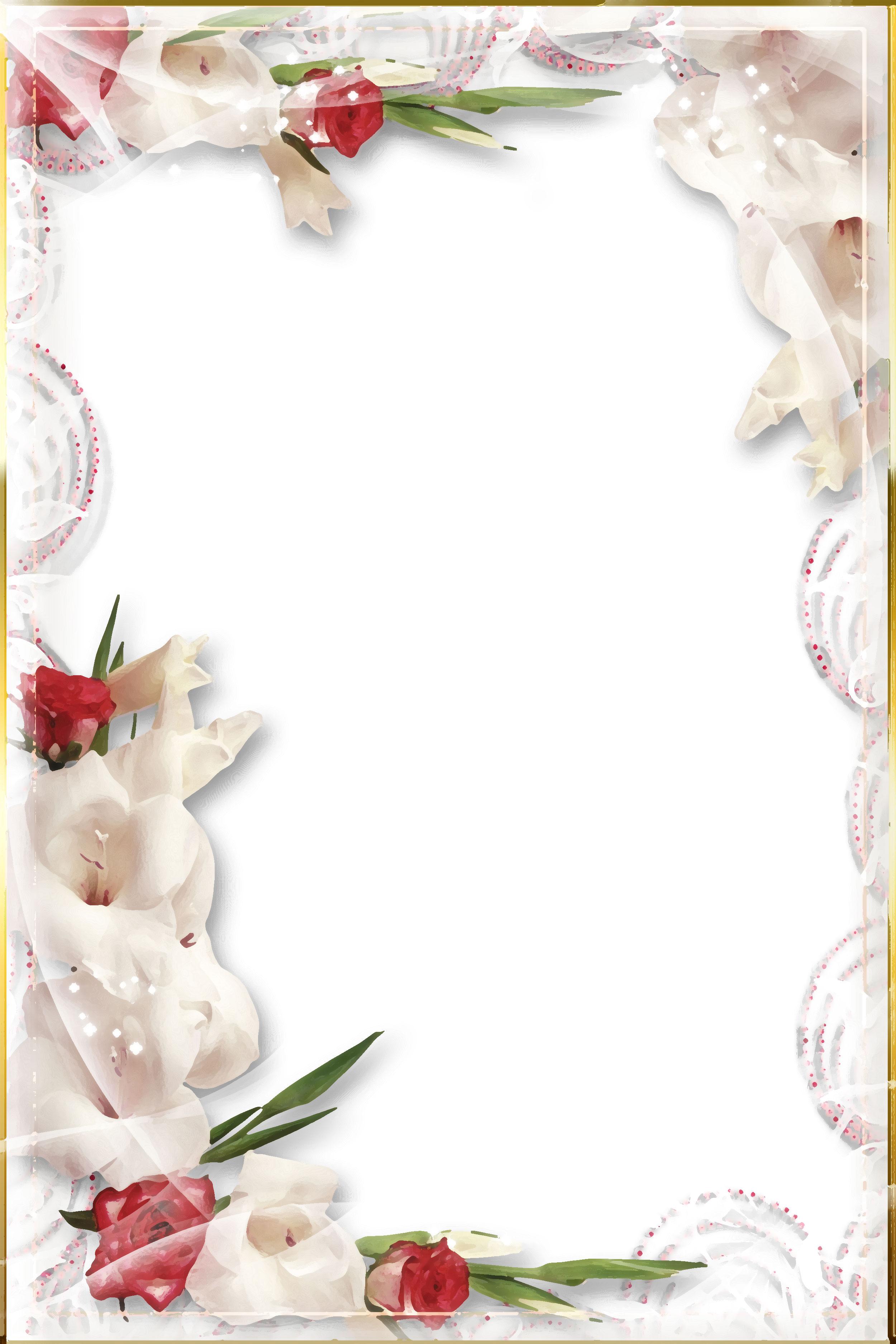 白いの花のイラスト・フリー素材/背景・壁紙no.359『赤白・バラ・光彩