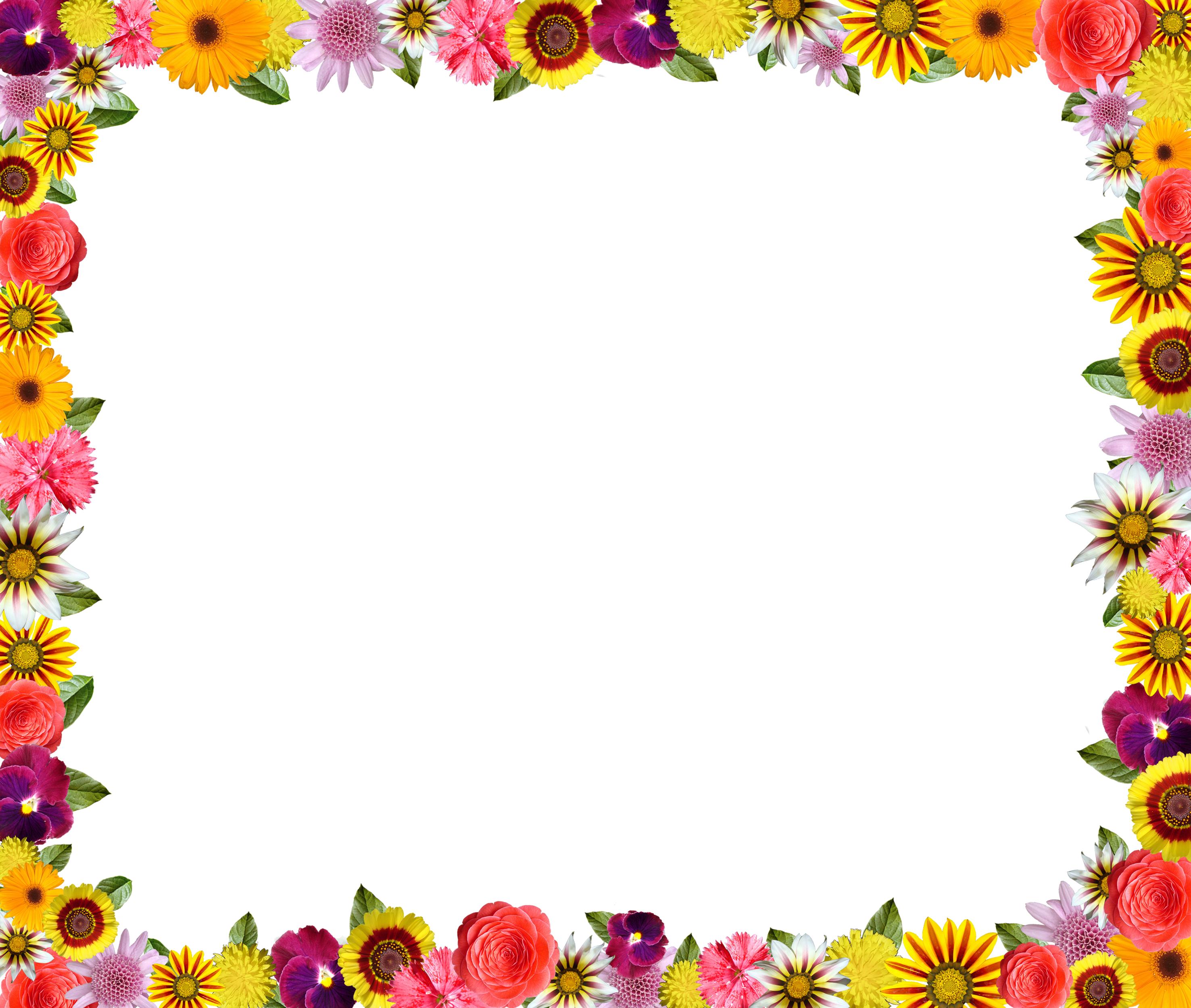 壁紙・背景イラスト/花のフレーム・外枠 no.174『カラフルフラワー