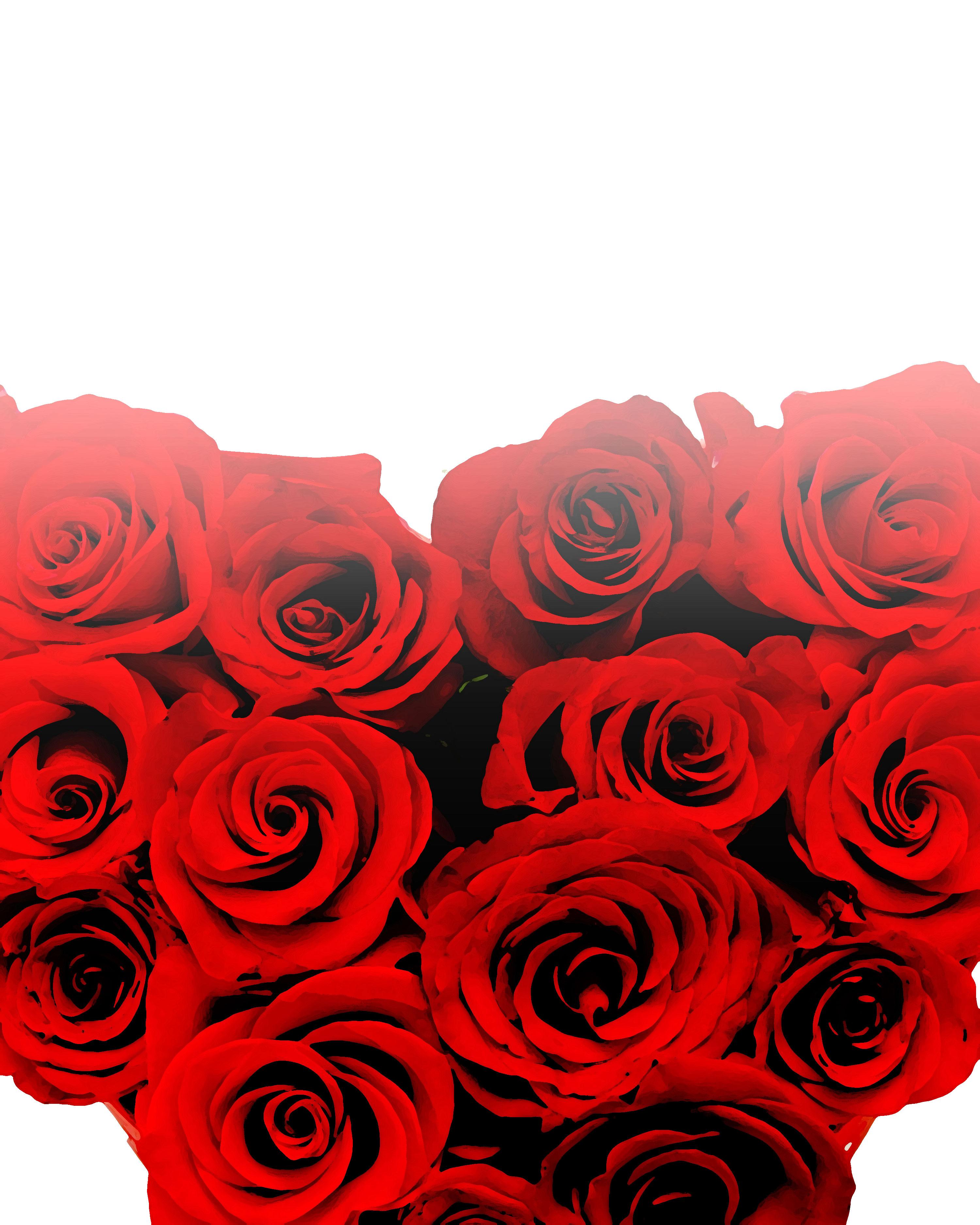 バラの画像 イラスト 壁紙 背景用 No 657 赤いバラ 束 光彩