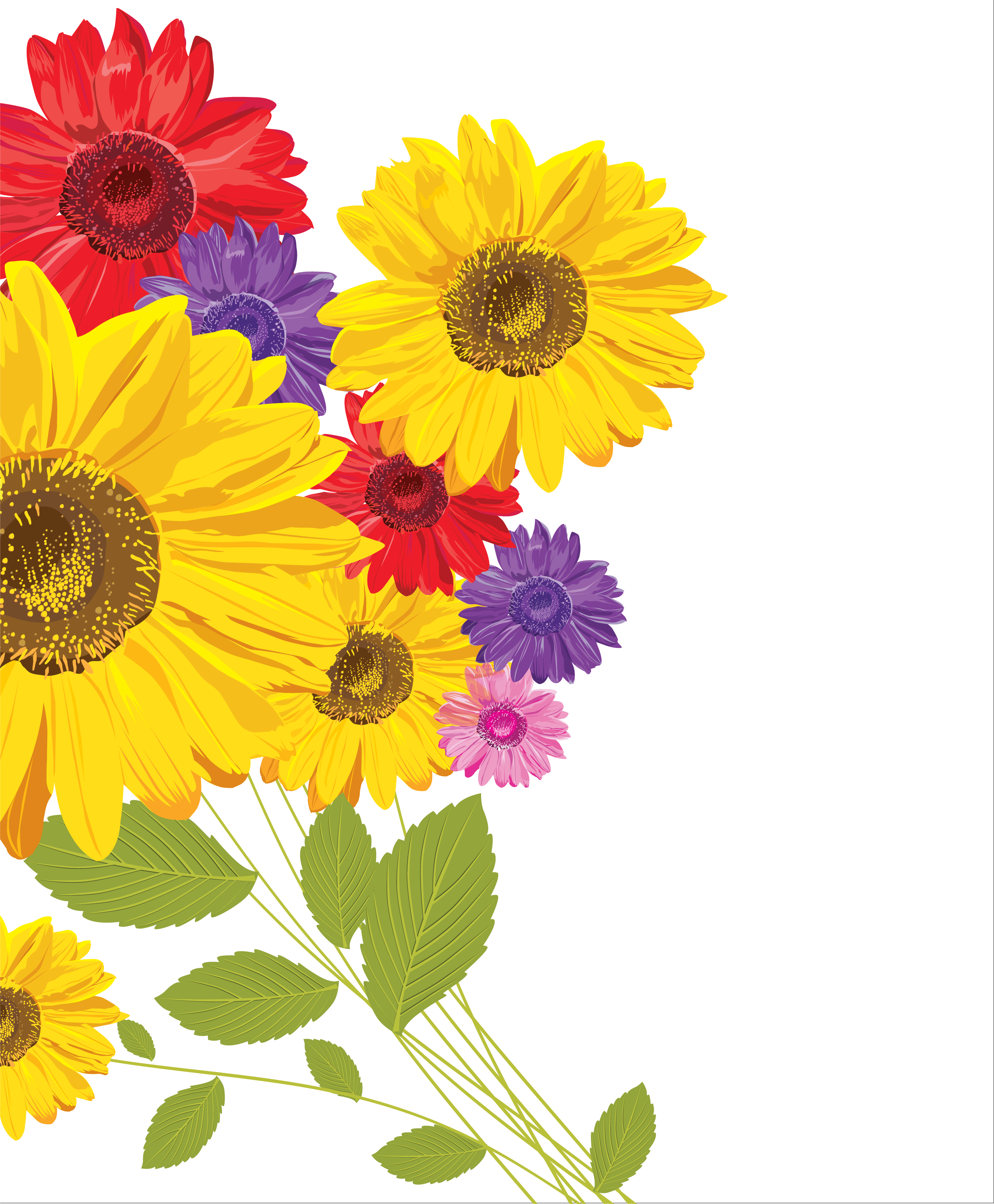 花の壁紙フリーイラスト,向日葵・赤青黄