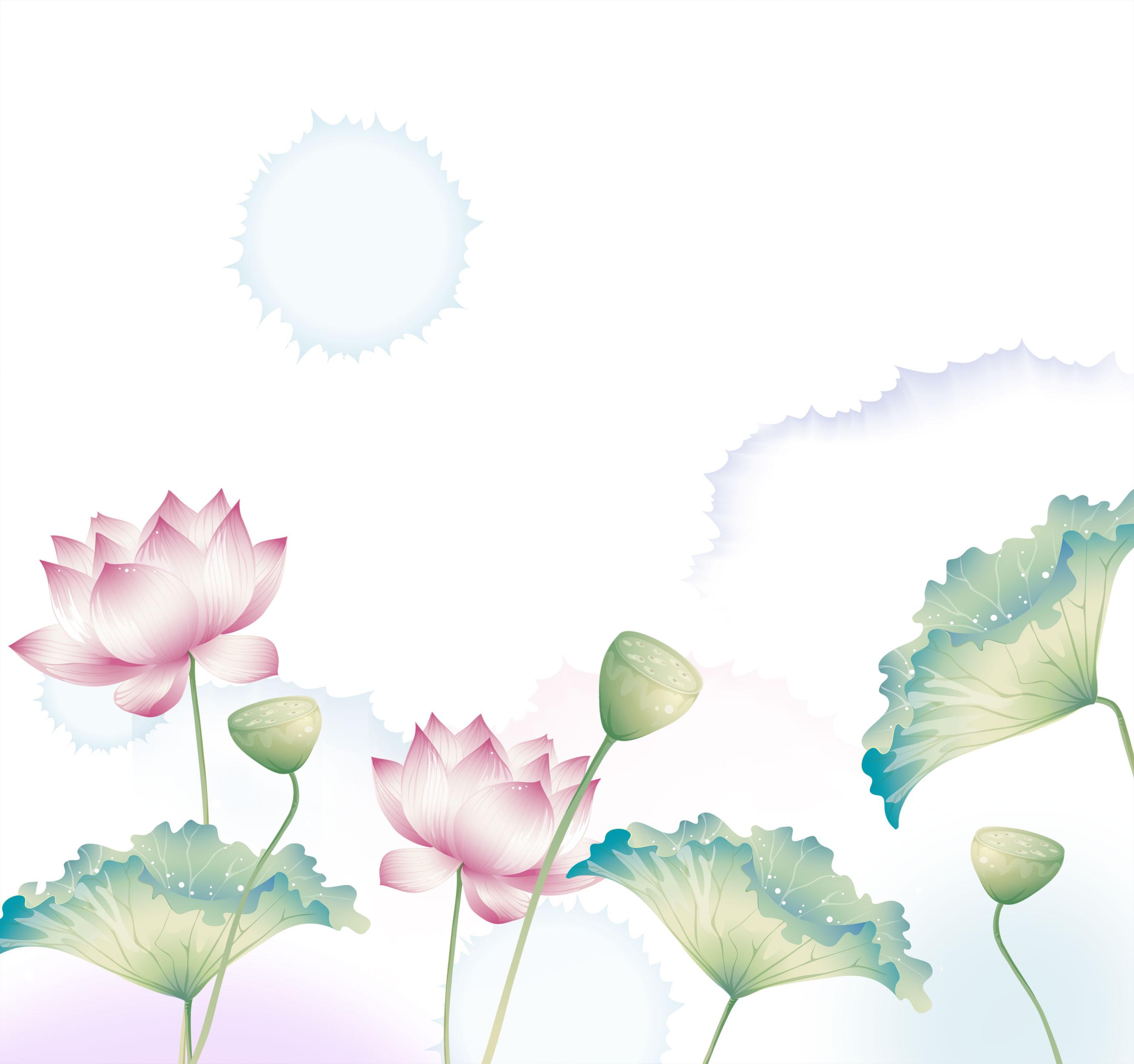 蓮の花言葉の意味|人に話したくなる知識と教養