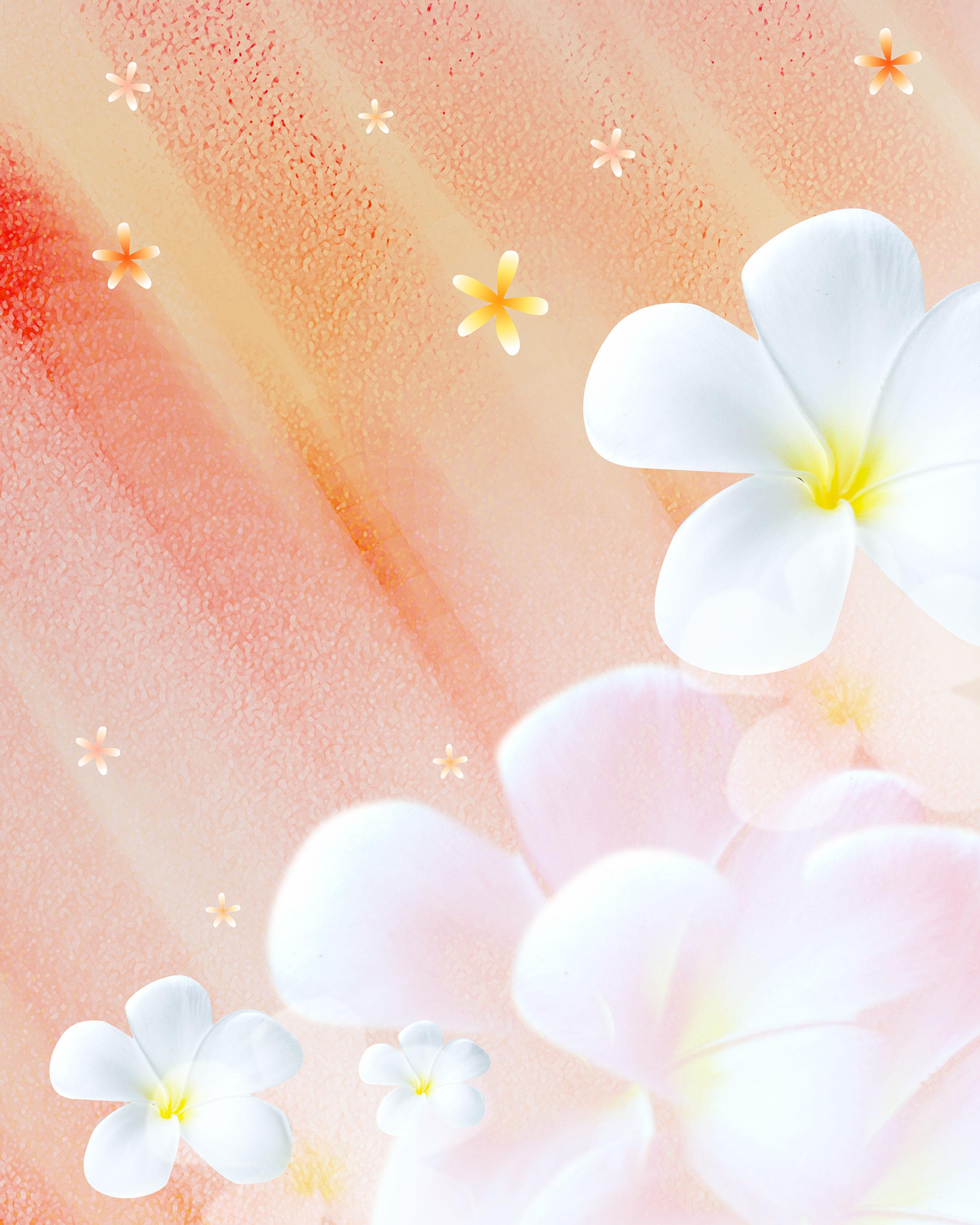 花のイラスト フリー素材 壁紙 背景no 043 白 プルメリア 淡い光彩