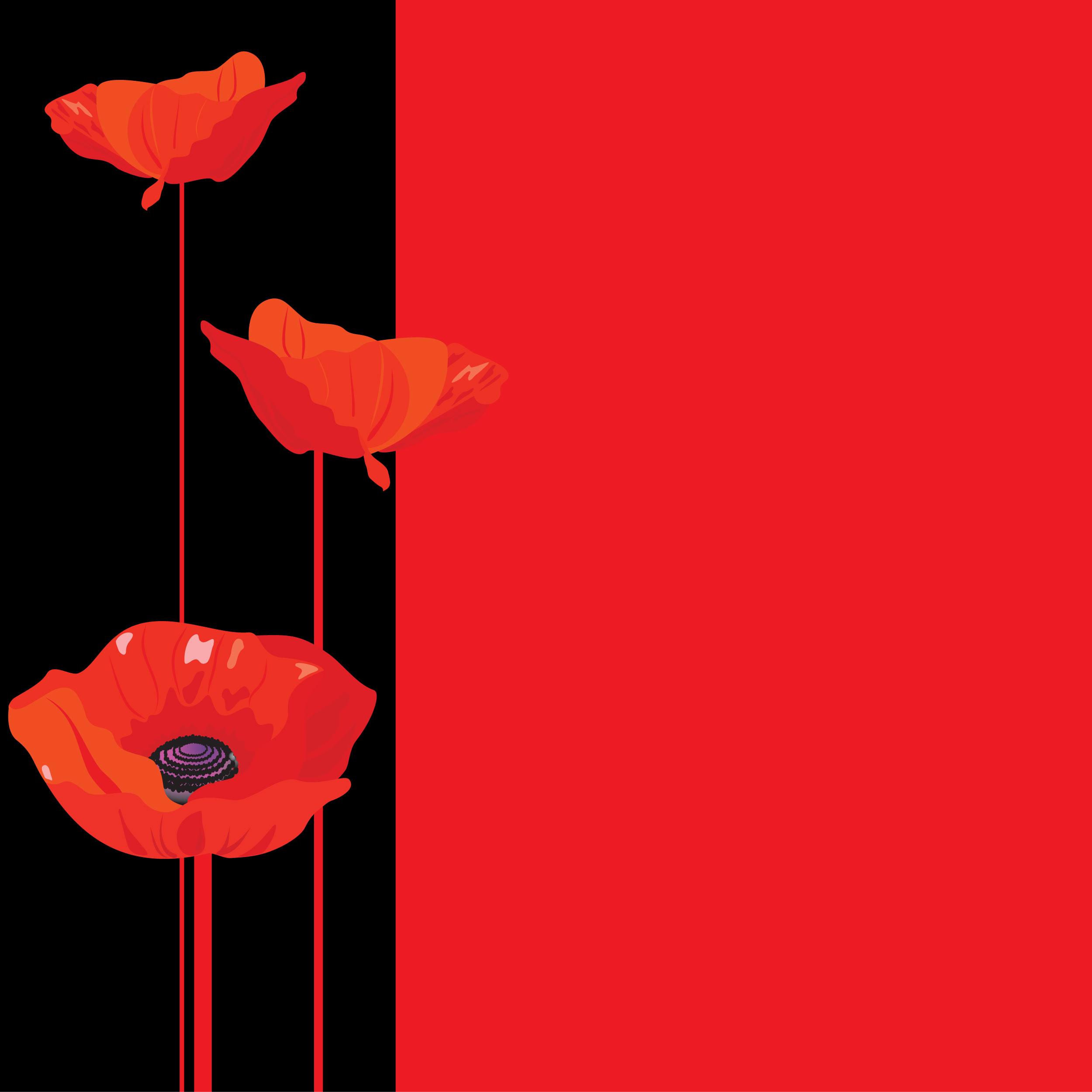 花のイラスト フリー素材 壁紙 背景no 759 赤黒 ポピー ひなげし