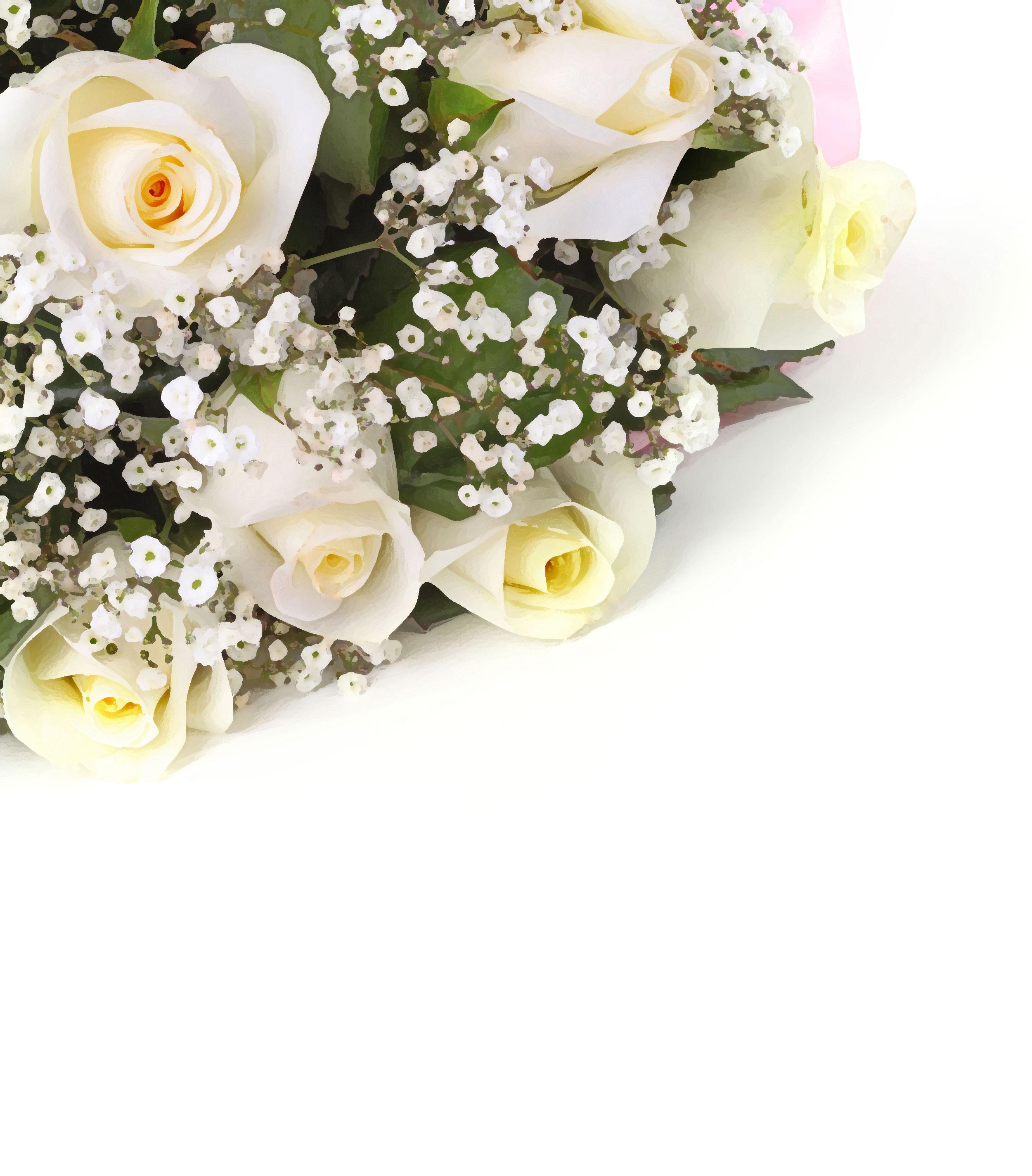 白いの花のイラスト・フリー素材/背景・壁紙no.440『白バラの束』