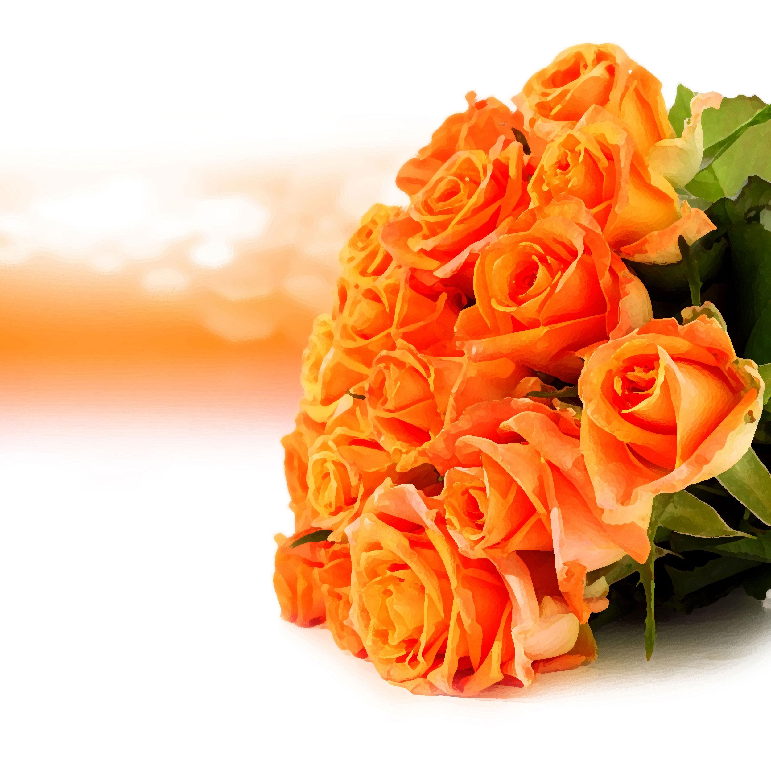 Прости, коралловые розы открытки