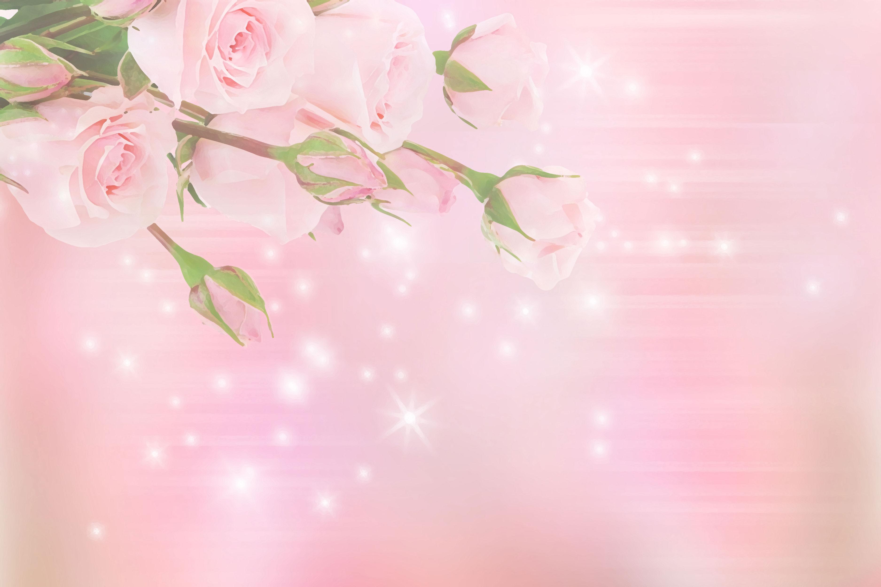 バラの画像 イラスト 壁紙 背景用 No 721 ピンクの薔薇 光彩