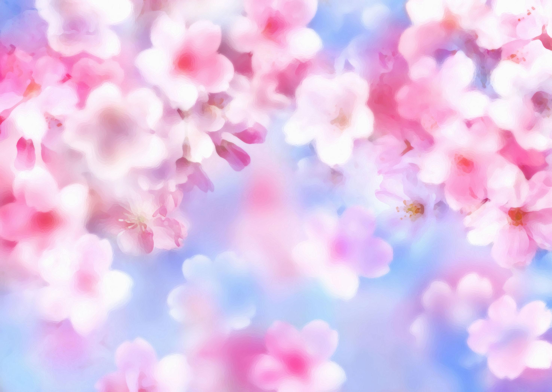 花のイラスト・フリー素材/壁紙・背景no.113『桜の花びら・青空』