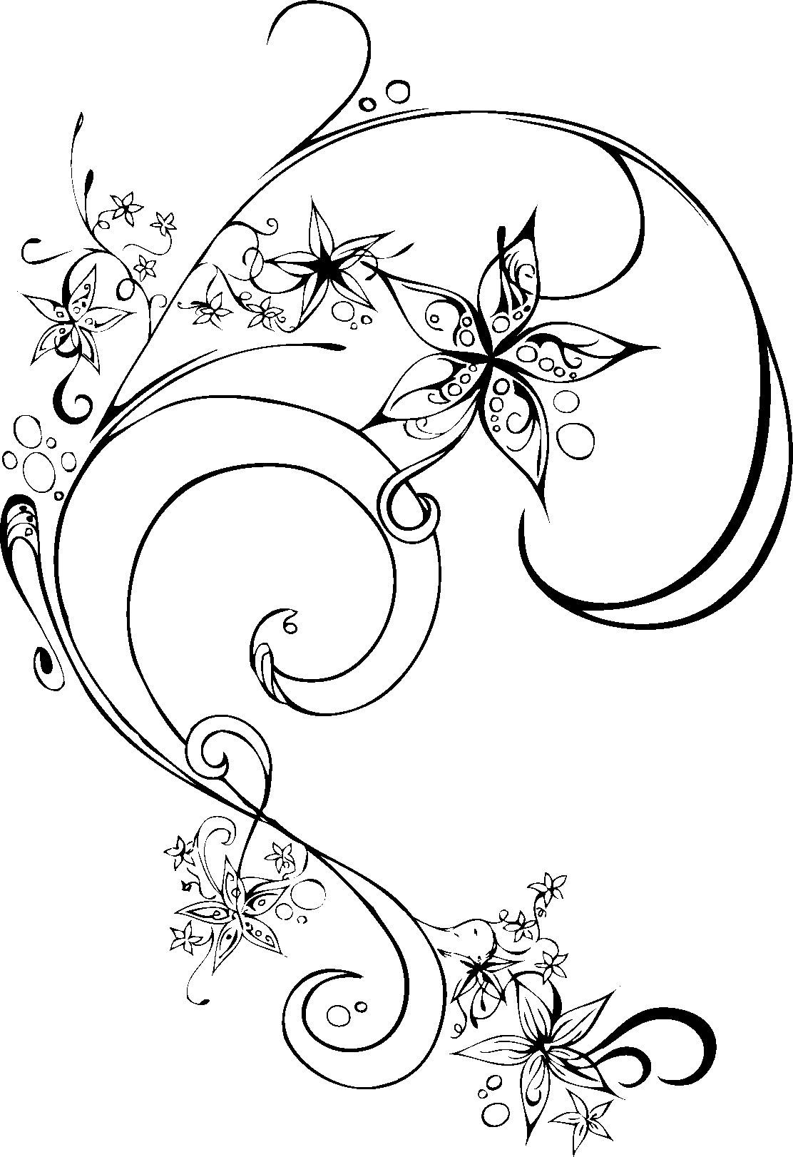 花の画像 p1_36