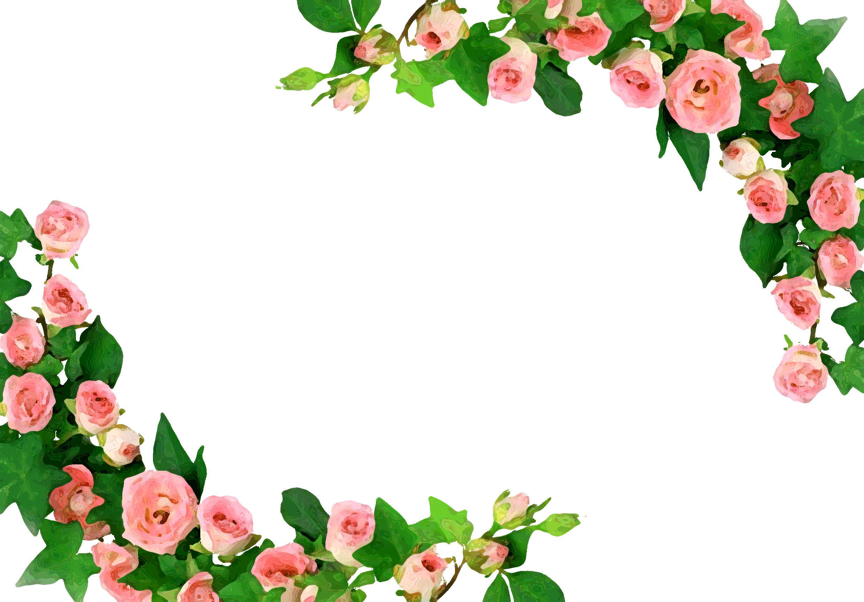 花のイラストフリー素材フレーム枠no394ピンクのバラ