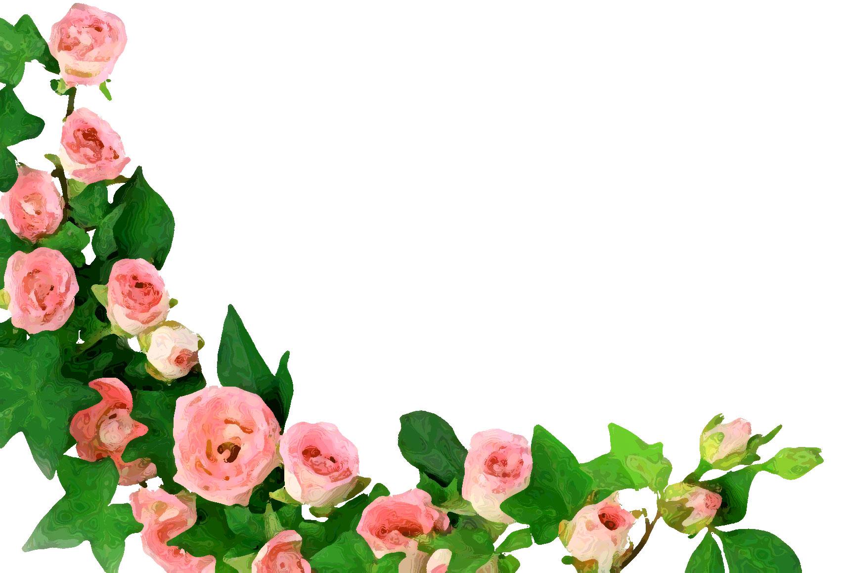 薔薇の画像 p1_32