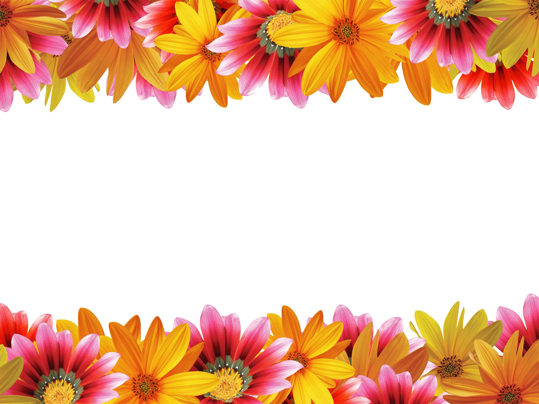 花の写真・フリー素材/フレーム枠No.050『上下』