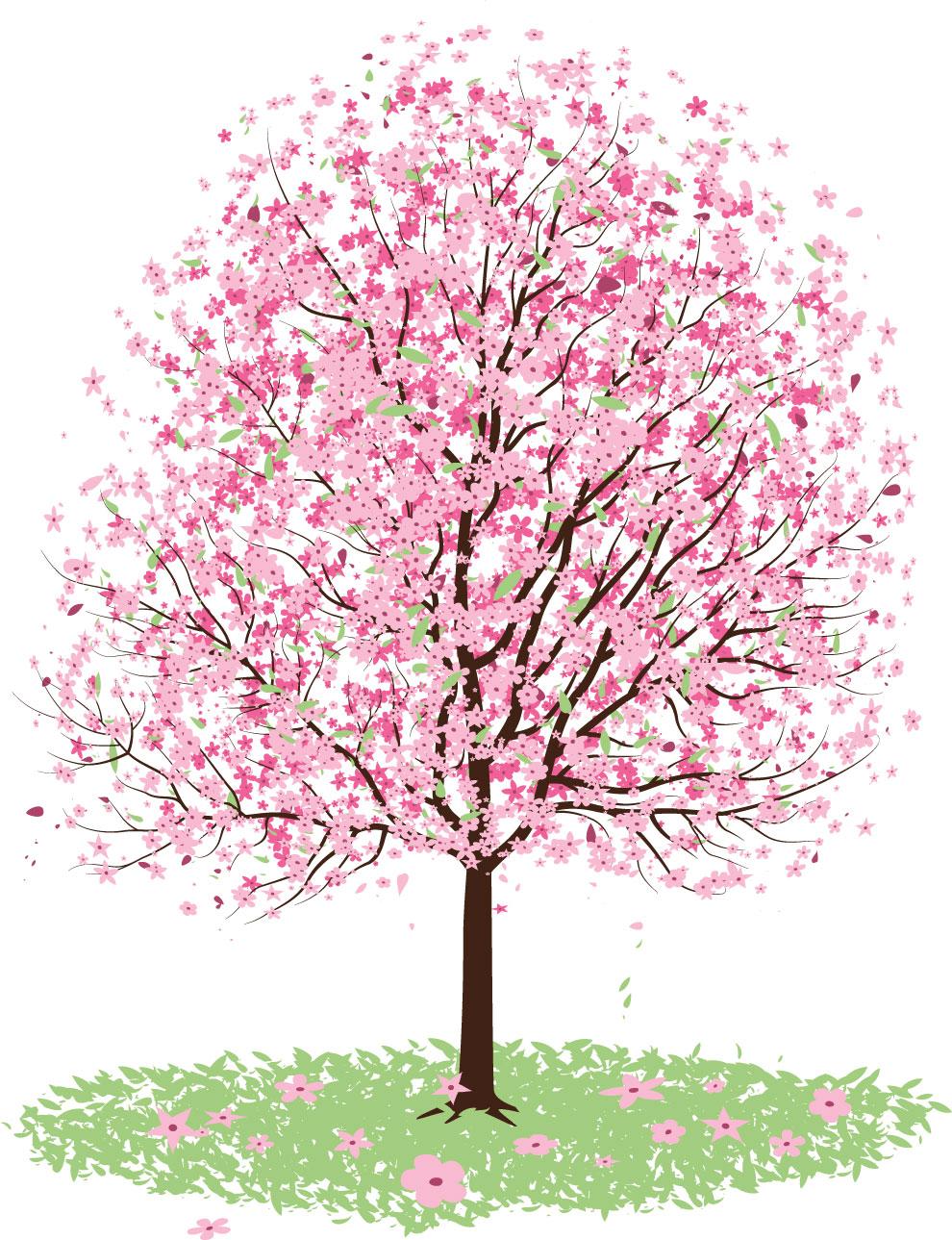 リアルタッチな花のイラストフリー素材no1049桜の木