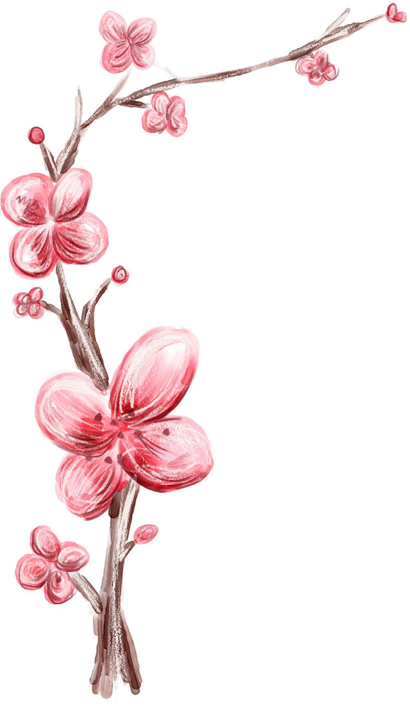 花の画像 p1_35