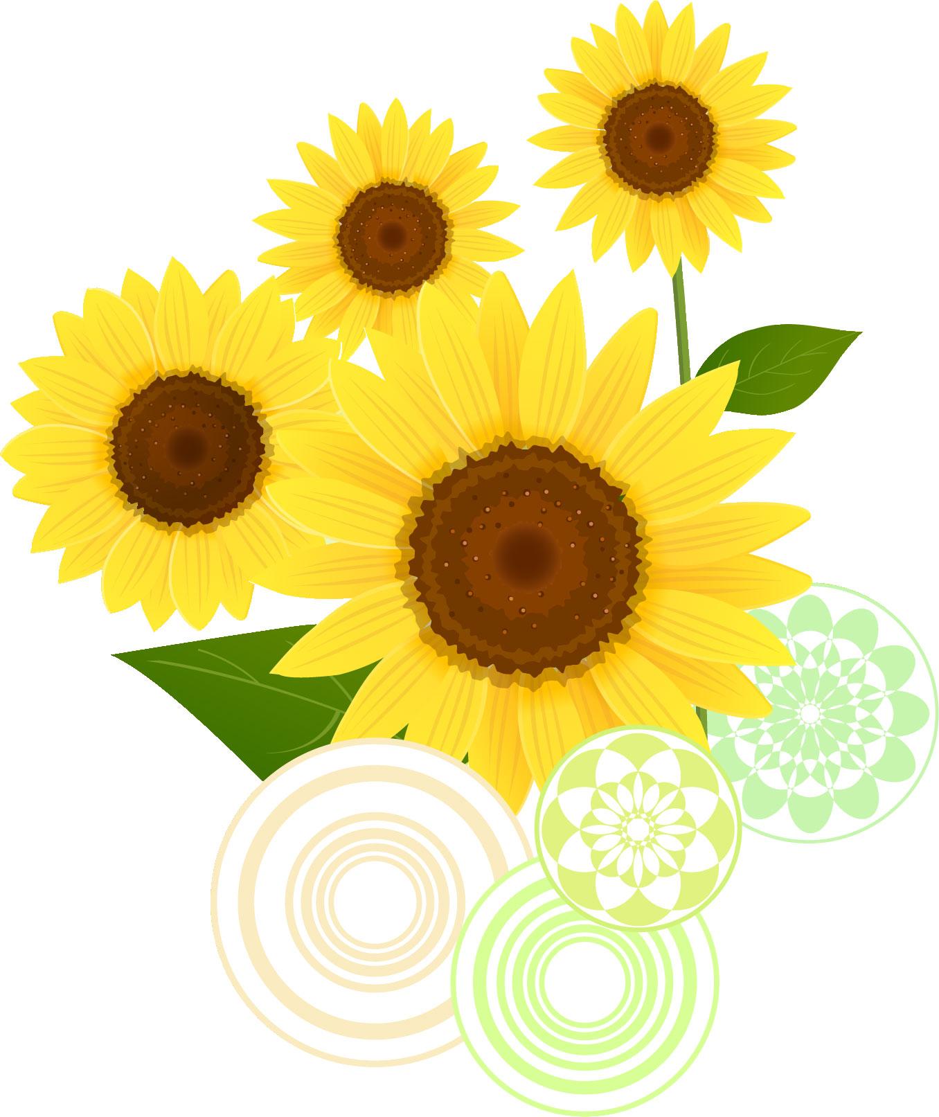 リアルタッチな花イラスト,向日葵