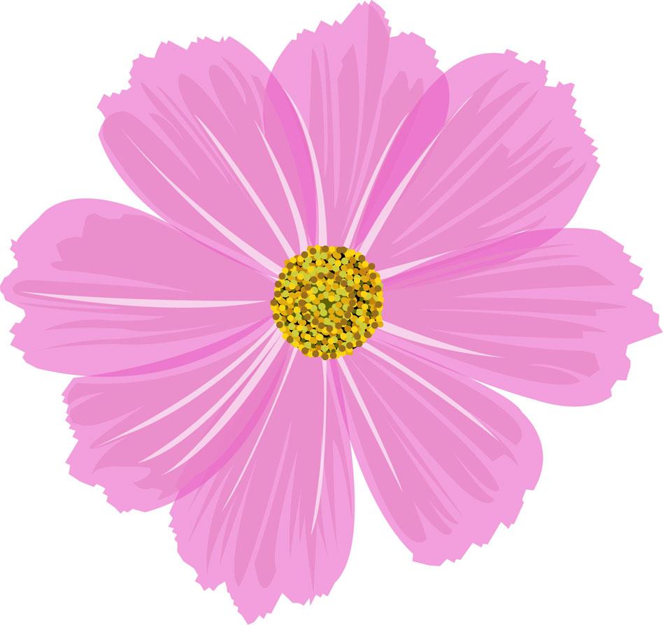 コスモスの花イラスト・画像 ... : さくらの花びら : すべての講義