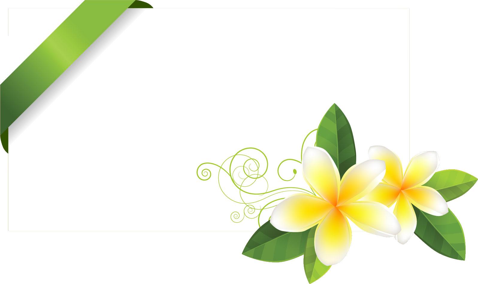 ... ・フリー素材 『白色の花 : カード 素材 フリー : カード