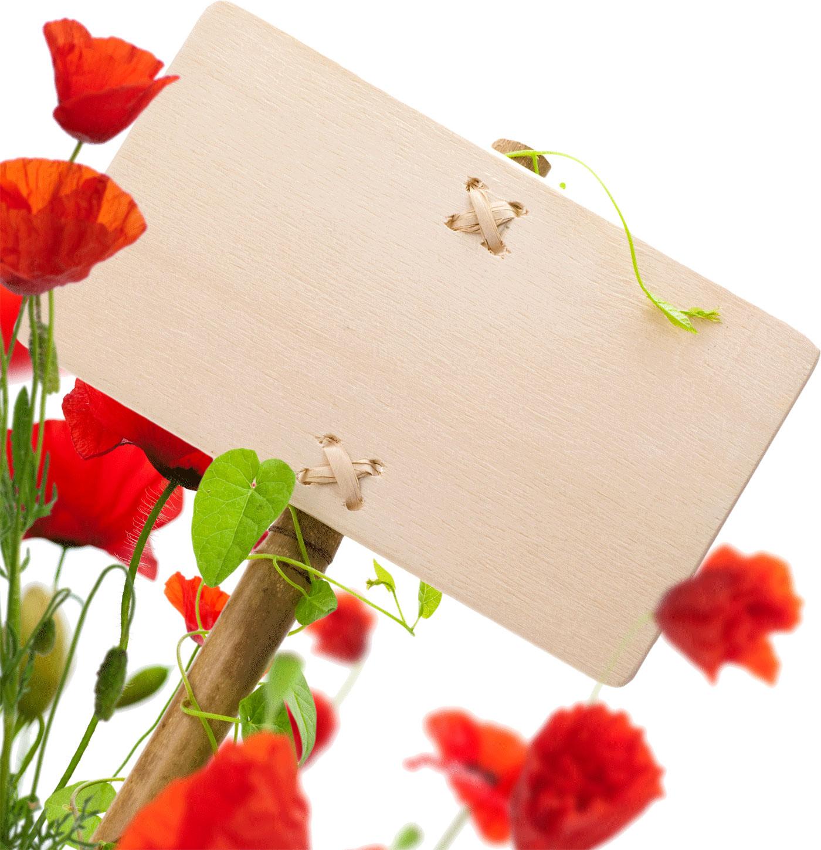 花のイラストフリー素材フレーム枠no381赤い花立て札