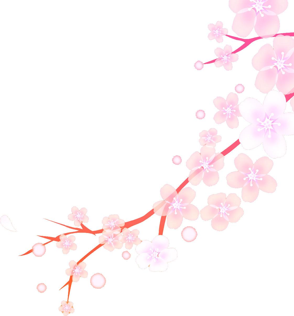 桜の花・桜の花びらイラスト画像【春】 - naver まとめ