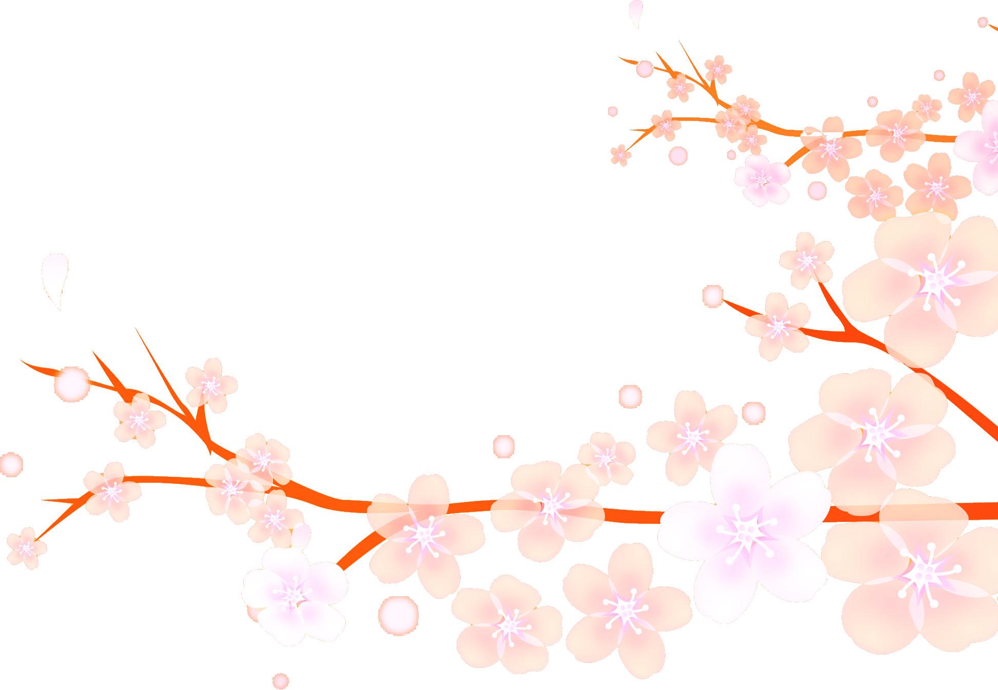 桜(さくら)の画像・イラスト・フリー素材/no.023『桜・枝・淡い