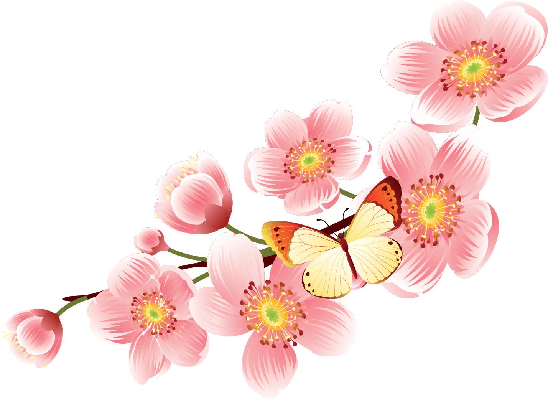 春にぴったりな桜のイラスト - naver まとめ