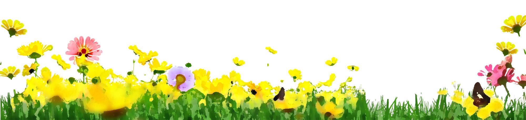 黄色い花のイラスト・フリー素材/no.187『花畑・草むら・蝶』
