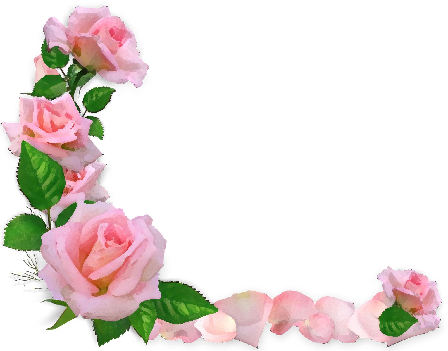 薔薇の画像 p1_37