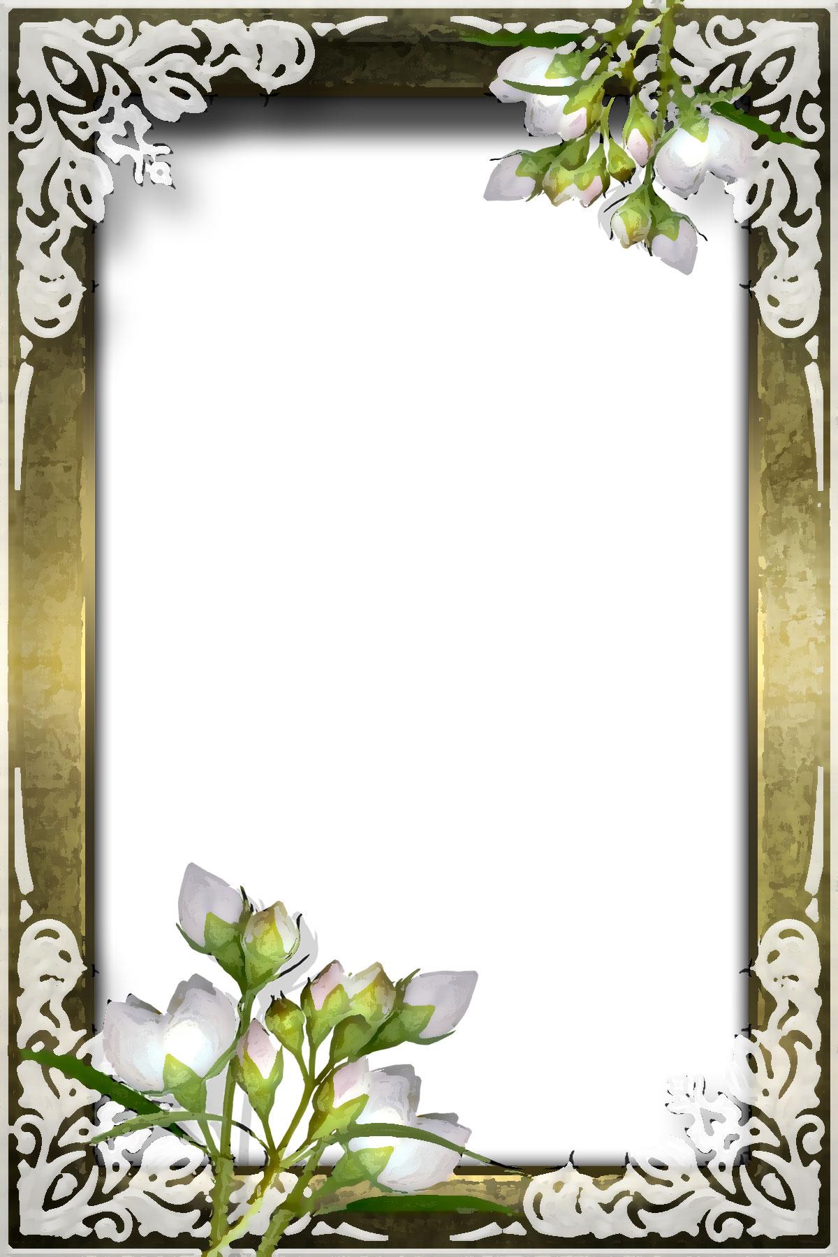白い花のイラストフリー素材no251薄紫つぼみ木枠