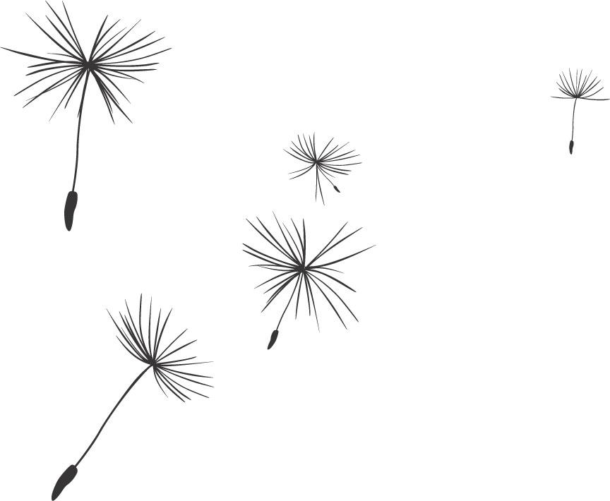 白黒の花のイラスト-たんぽぽ ... : 便箋 ダウンロード フリー : すべての講義