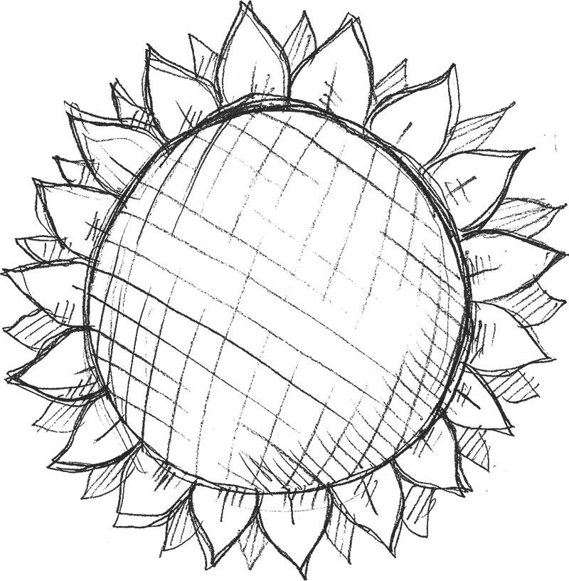 花絵のフリー素材,モノクロ・向日葵