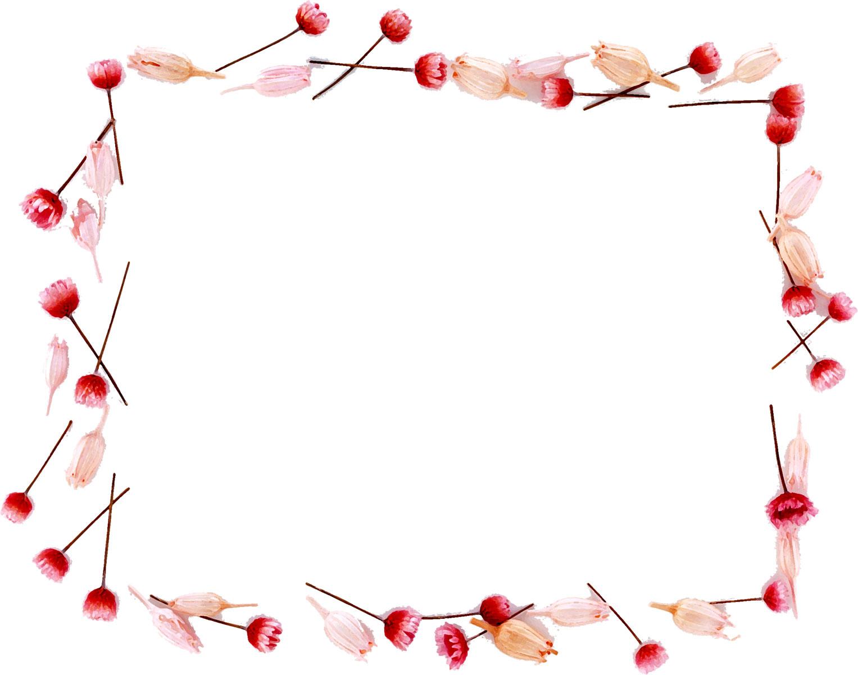 花のイラスト・フリー素材/フレーム枠no.609『赤・ピンク・つぼみ』
