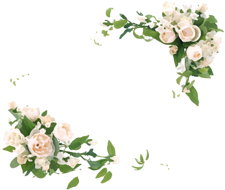 バラの画像・イラスト『フレーム・タイトル枠』/No 581『白・ピンクバラ・緑葉』