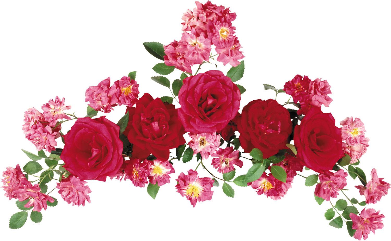 花の写真フリー素材花束no084赤いバラ