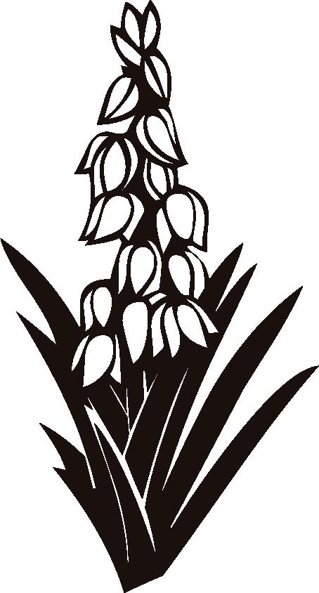 юкка цветок рисунок ваты изготавливают