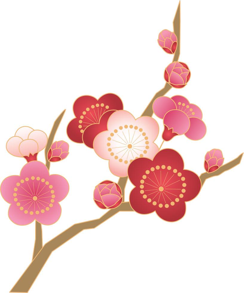 花のフリーイラスト素材,梅・赤白ピンク
