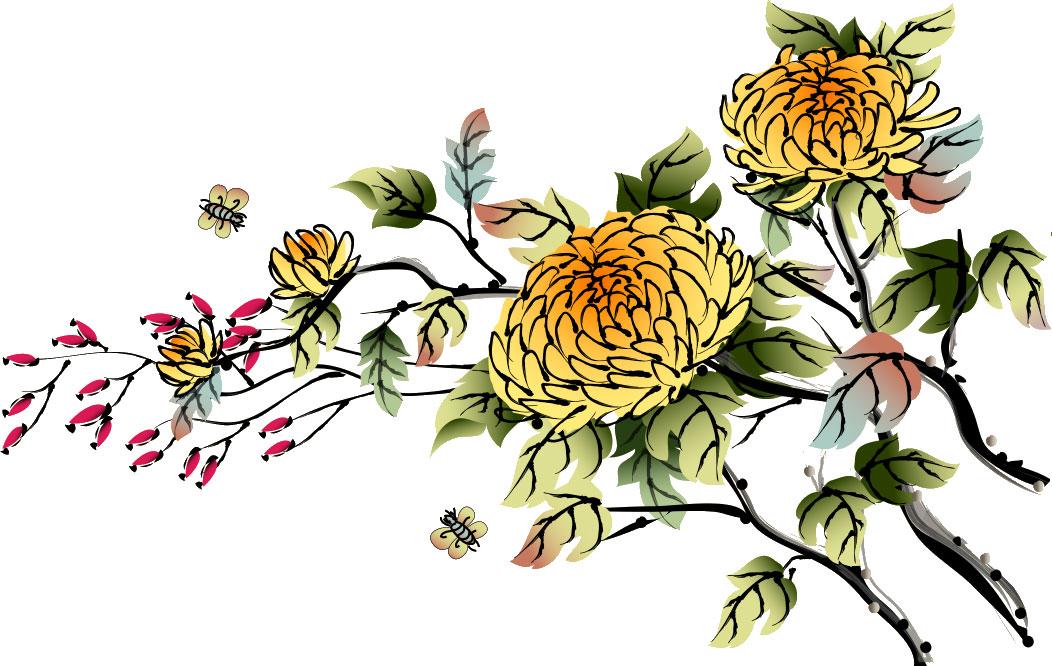 菊の画像 p1_34