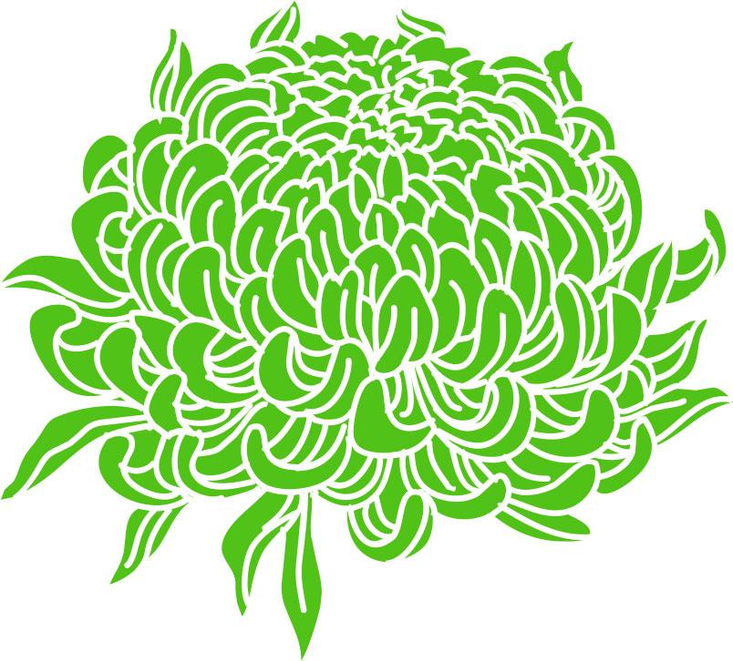 菊の画像 p1_31
