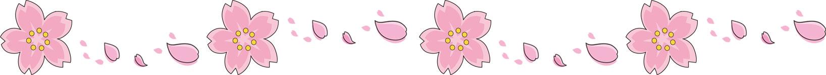 画像サンプル-横線:さくらの花びら