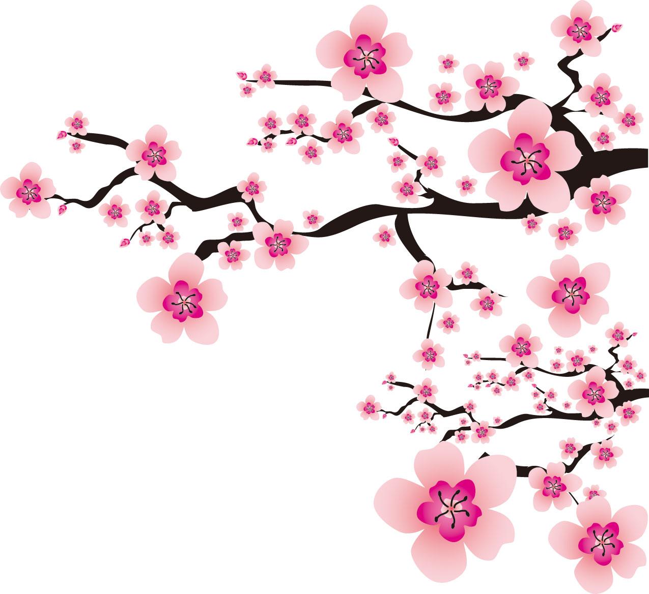 桜の画像 p1_31