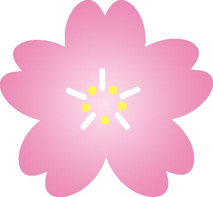 画像サンプル-サクラの花びら