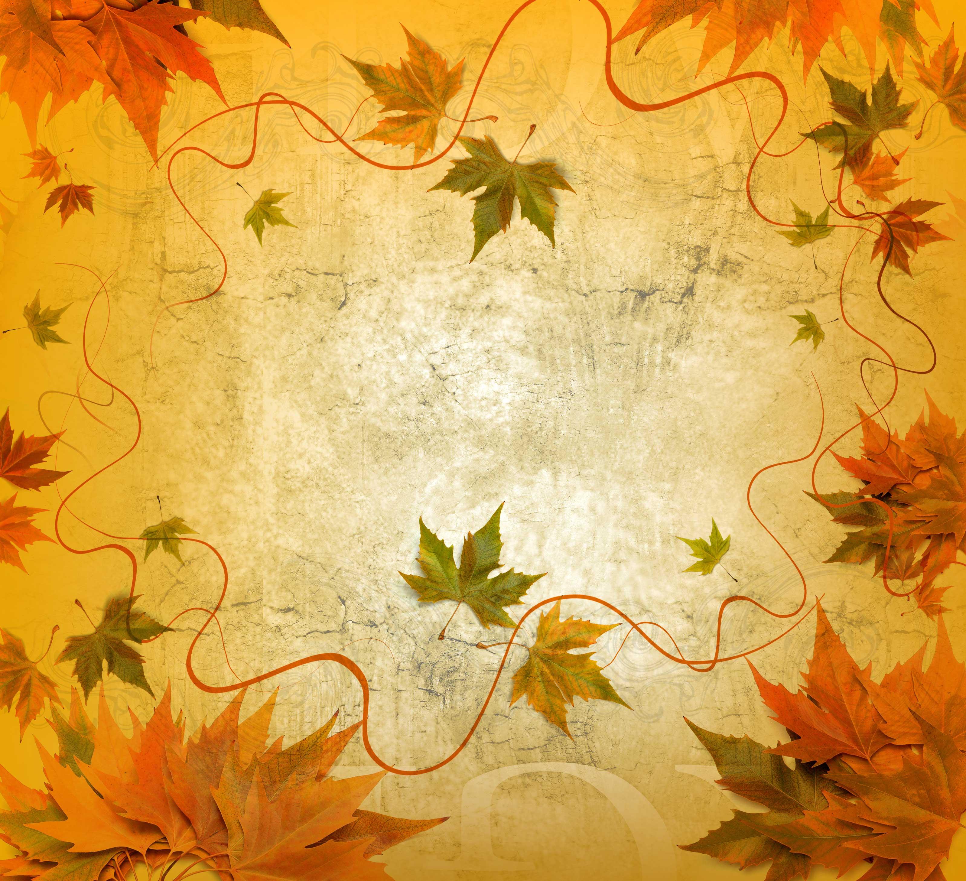 Картинки осенний фон