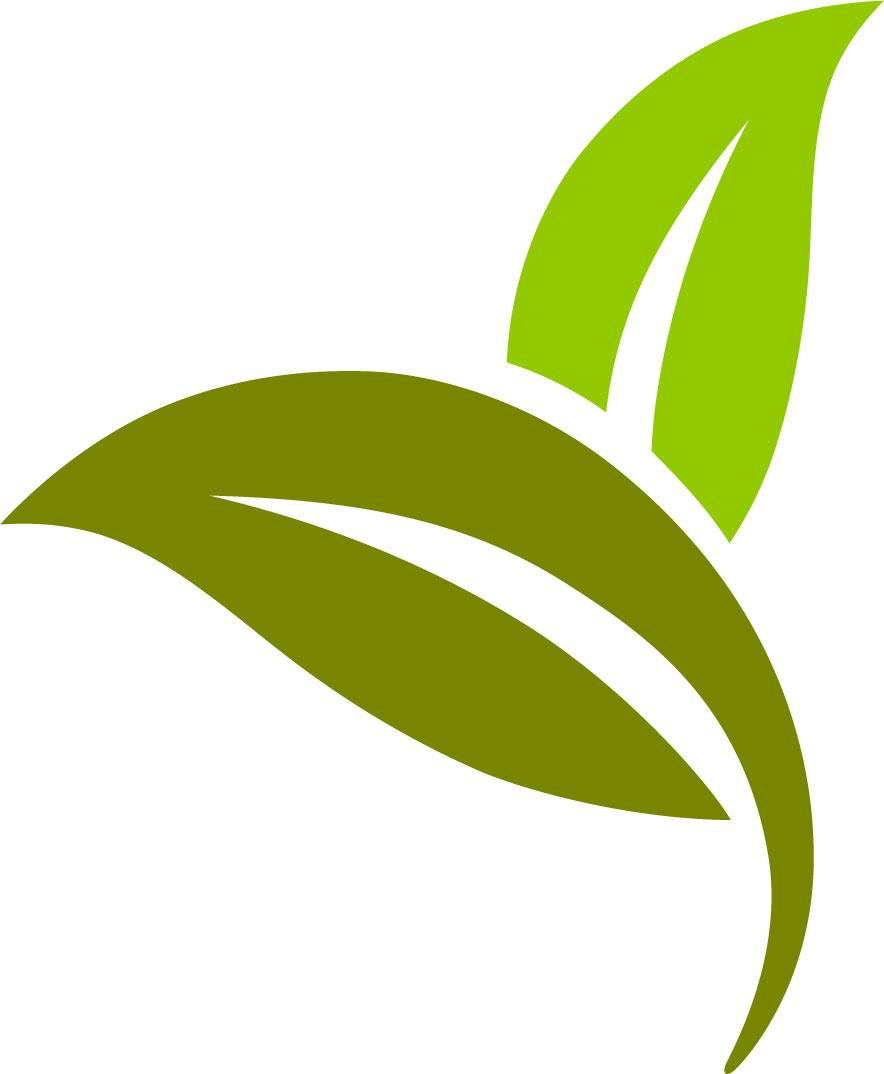 葉っぱの見本画像-葉・黄緑 葉っぱや草木のイラスト・画像・フリー素材/No.129『葉・黄緑』