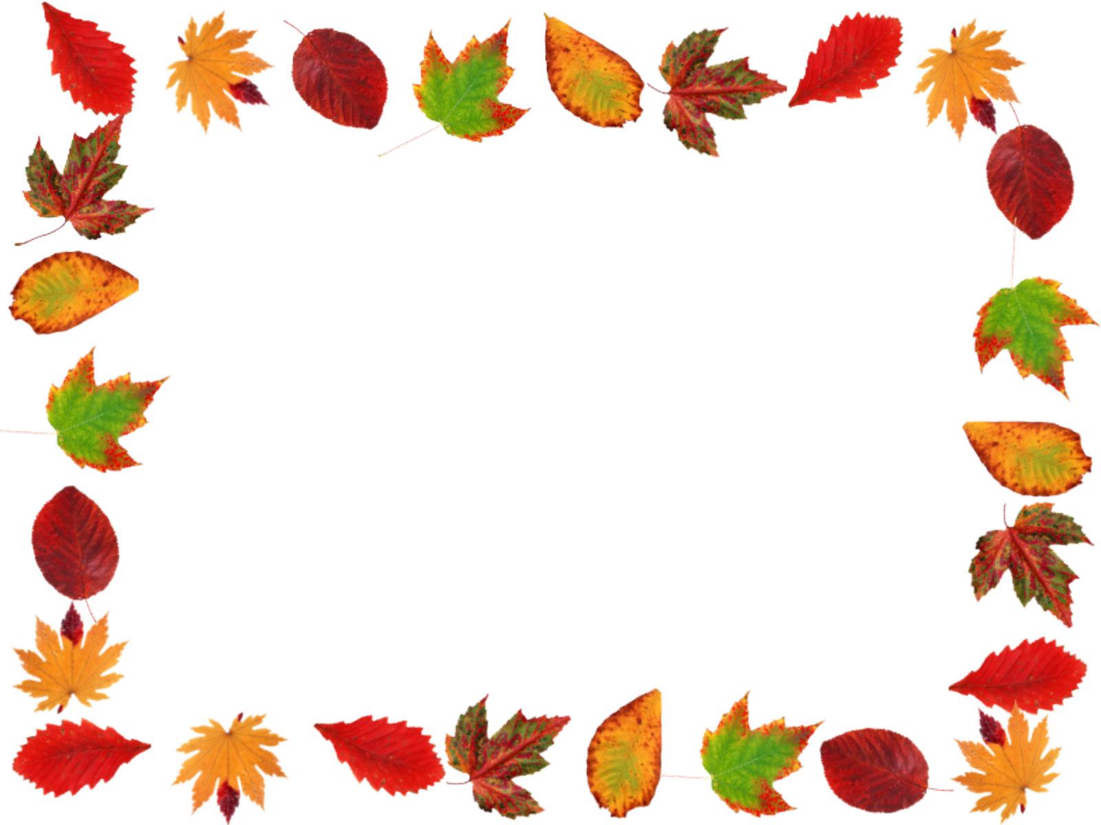葉っぱ・草木のイラスト・フリー素材/フレーム枠no.1020『秋の紅葉』